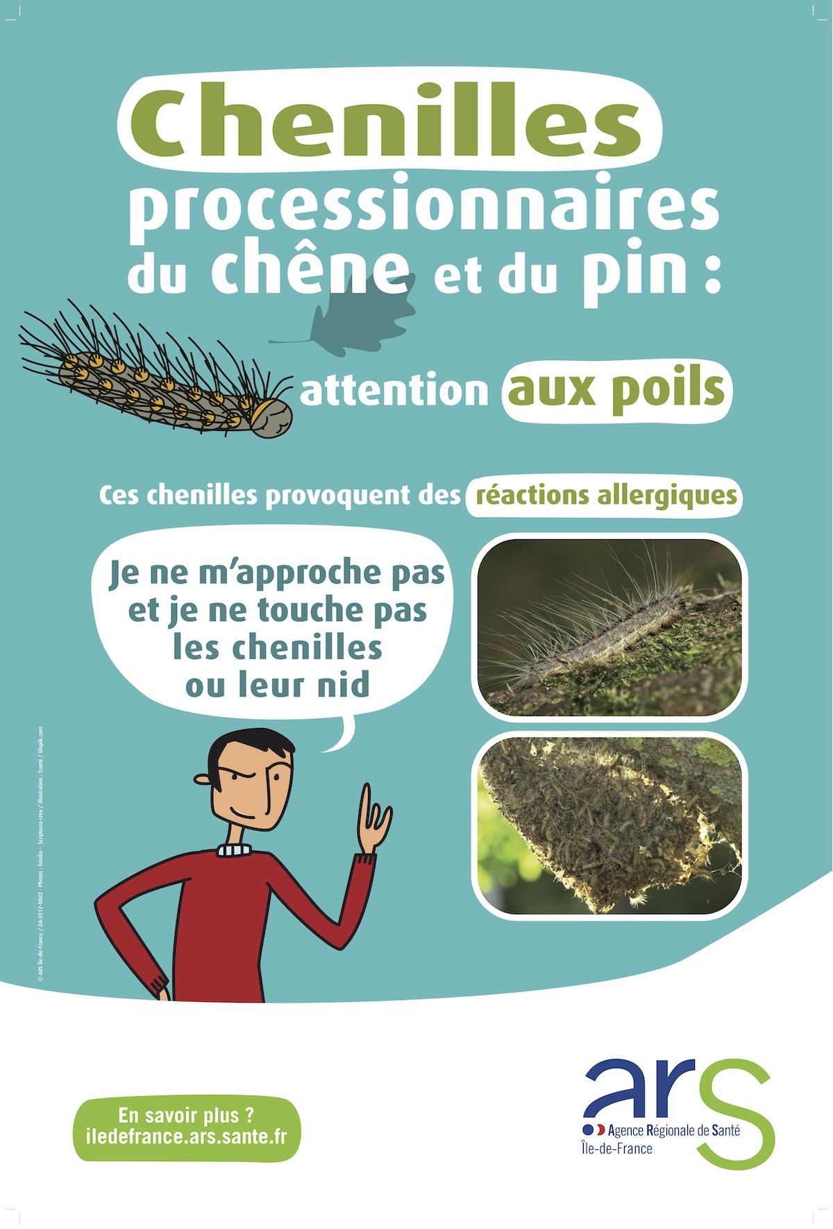 Chenilles-processionnaies-affiche-400-600